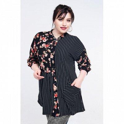 Новый Прикид  до 74 размера — Туники,блузки — Туники