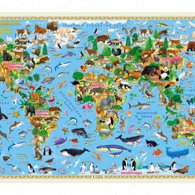 Геодом! Отличные развивашки. Супер полиграфия!      — Детские настенные карты — Детям и подросткам