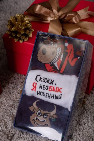 Носки Подарок мужские