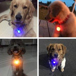 LED брелок на ошейник, цвет в ассортименте