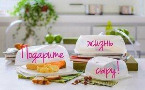 Умная Эко-сырница малая 20х20х9,5см - Tupperware®