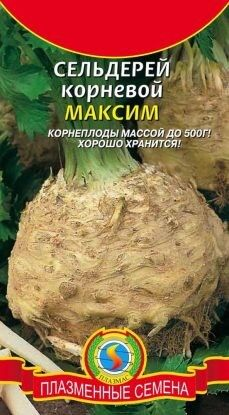 Сельдерей корневой Максим ЦВ/П (ПЛАЗМА) среднеспелый