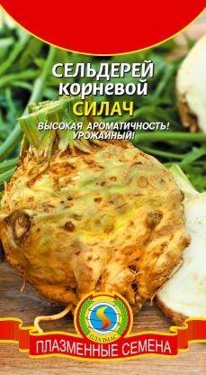 Сельдерей корневой Силач ЦВ/П (ПЛАЗМА)