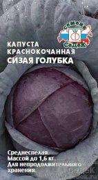Капуста красн/к Сизая голубка ЦВ/П (СЕДЕК) 0,5гр среднеспелый