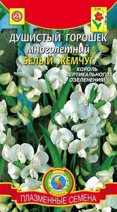 Цветы Горошек Душистый Белый жемчуг ЦВ/П (ПЛАЗМА) многолетнее до 1,8м