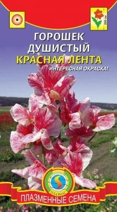 Цветы Горошек Душистый Красная Лента ЦВ/П (ПЛАЗМА) однолетнее до 2,5м