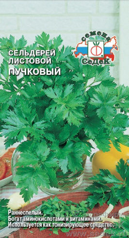 Сельдерей листовой Пучковый ЦВ/П (СЕДЕК)