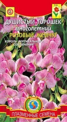 Цветы Горошек Душистый Розовый жемчуг ЦВ/П (ПЛАЗМА) многолетнее до 1,8м