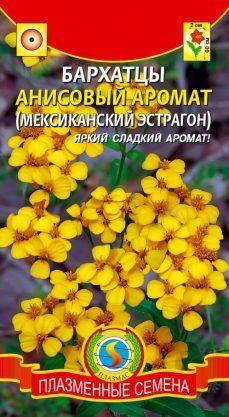 Цветы Бархатцы Анисовый аромат ЦВ/П (ПЛАЗМА) 50-60см