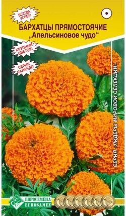 Цветы Бархатцы Апельсиновое Чудо ЦВ/П (ЕС) прямостоячие 30см
