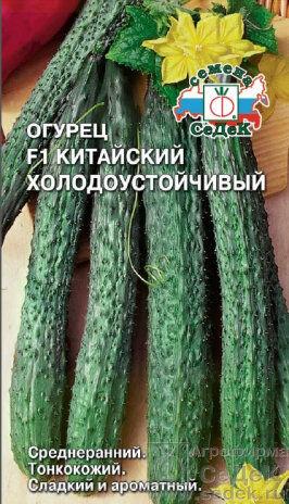 Огурец Китайский Холодоустойчивый F1 ЦВ/П (СЕДЕК) среднеранний