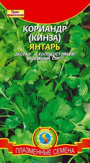 Пряность Кориандр Янтарь ЦВ/П (ПЛАЗМА)