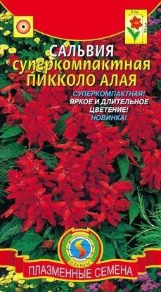 Цветы Сальвия суперкомпактная Пикколо Алая ЦВ/П (ПЛАЗМА)