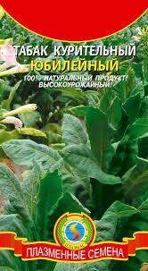 Табак курительный Юбилейный ЦВ/П (ПЛАЗМА) среднеспелый