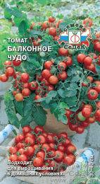 Томат Балконное Чудо ЦВ/П (СЕДЕК) скороспелый до 30-40 см
