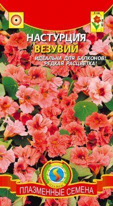 Цветы Настурция Везувий ЦВ/П (ПЛАЗМА) розово-лососёвый махровый однолетнее 30-40см