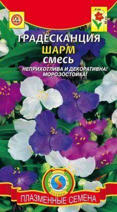 Цветы Традесканция Шарм СМЕСЬ ЦВ/П (ПЛАЗМА)