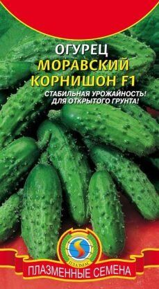 Огурец Моравский Корнишон F1 ЦВ/П (ПЛАЗМА) раннеспелый