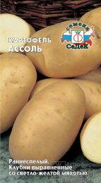 Картофель Ассоль ЦВ/П (СЕДЕК) 0,02гр раннеспелый желтый
