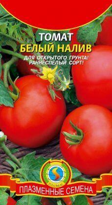 Томат Белый налив ЦВ/П (Плазма) раннеспелый до 40-60 см