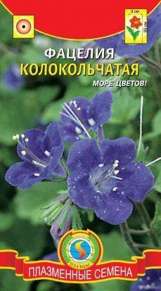 Цветы Фацелия Колокольчатая ЦВ/П (ПЛАЗМА) Почвопокровное растение