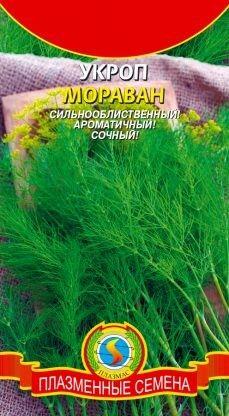 Укроп Мораван ЦВ/П (ПЛАЗМА) 1,5гр позднеспелый