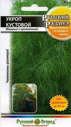 Укроп Русский размер ЦВ/П (НК) 200шт позднеспелый кустовой