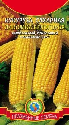 Кукуруза Лакомка белогорья ЦВ/П (ПЛАЗМА) Сахарная 5гр раннеспелый