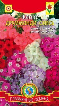 Цветы Флокс Друммонди Смесь ЦВ/П (ПЛАЗМА)