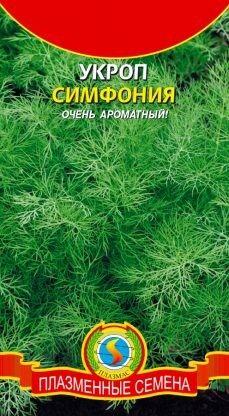 Укроп Симфония ЦВ/П (ПЛАЗМА) 2гр среднеспелый обильнолиственный