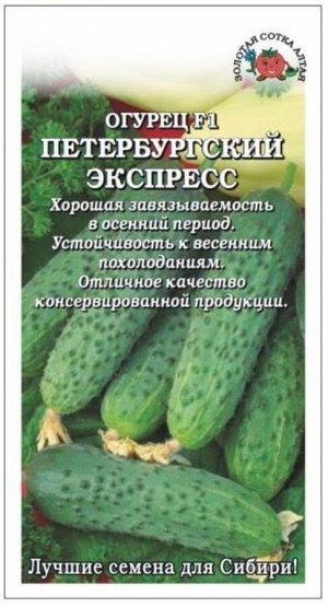 Огурец Петербургский экспресс ЦВ/П (Сотка) скороспелый партенокарпический