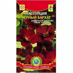 Цветы Настурция Чёрный Бархат ЦВ/П (ПЛАЗМА) однолетнее 40см