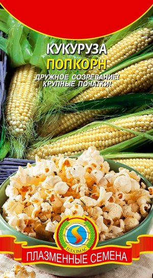 Кукуруза Попкорн ЦВ//П (ПЛАЗМА) 4,5гр среднеспелый