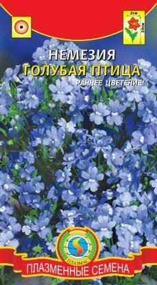Цветы Немезия Голубая птица ЦВ/П (ПЛАЗМА) однолетнее 20см