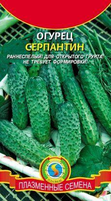 Огурец Серпантин ЦВ/П (ПЛАЗМА) раннеспелый