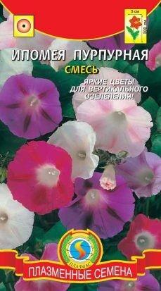 Цветы Ипомея Пурпурная смесь ЦВ/П (ПЛАЗМА) однолетнее до 3м