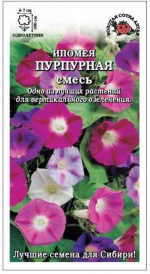 Цветы Ипомея Пурпурная смесь ЦВ/П (Сотка) однолетнее до 3м