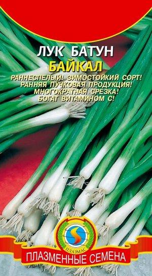 Лук Батун Байкал ЦВ/П (ПЛАЗМА) 0,5гр раннеспелый