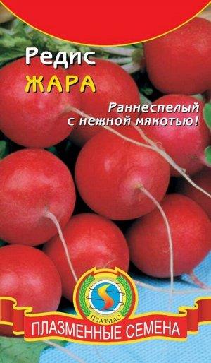 Редис Жара ЦВ/П (ПЛАЗМА) раннесп. кругл.