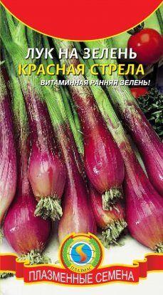 ЛУК на зелень Красная стрела ЦВ/П (ПЛАЗМА) скороспелый