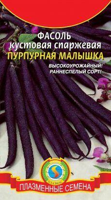 Фасоль Пурпурная малышка ЦВ/П (ПЛАЗМА) раннеспелый спаржевый кустовой
