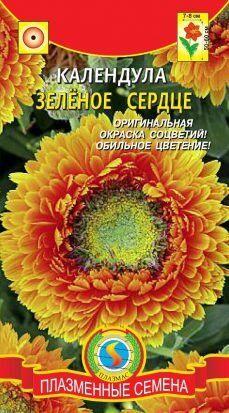 Цветы Календула Зеленое Сердце ЦВ/П (Плазма) однолетнее 50-60см