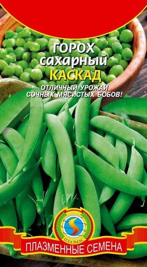 Горох Каскад ЦВ/П (ПЛАЗМА) среднеспелый 75-80см