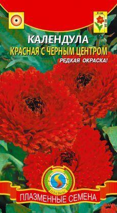 Цветы Календула Красная с чёрным центром ЦВ/П (Плазма) однолетнее 50-60см