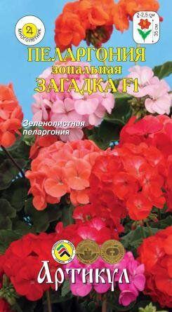 Цветы Пеларгония Загадка F1 ЦВ/П (АРТИКУЛ) 5шт смесь комнатное 25см
