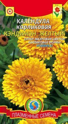 Цветы Календула Кэндимэн Жёлтый ЦВ/П (Плазма) однолетнее 30см