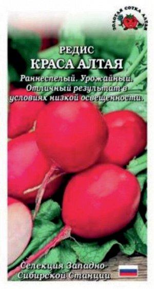 Редис Краса Алтая ЦВ/П (Сотка) 2гр раннеспелый