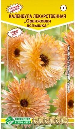 Цветы Календула Оранжевая вспышка ЦВ/П (ЕС) однолетнее