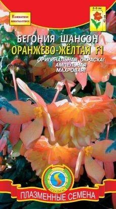 Цветы Бегония Шансон Оранжево-Жёлтая F1 ЦВ/П (ПЛАЗМА) комнатное 45см