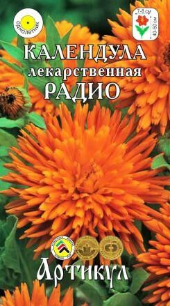 Цветы Календула Радио ЦВ/П (АРТИКУЛ) однолетнее 40-50см